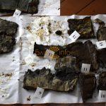 В Івано-Франківській області розкопали ще один архів УПА: фото