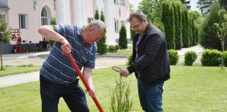 Лісівники допомогли озеленити територію Залучанського дитячого будинку