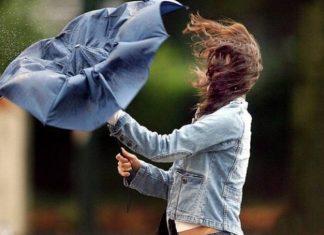 Синоптики попереджають прикарпатців про посилення вітру