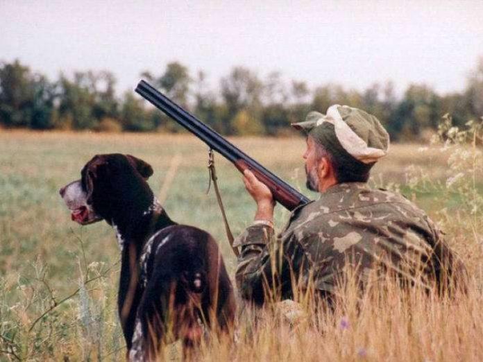 У серпні на Прикарпатті стартує сезон полювання