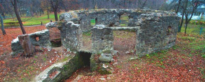На Прикарпатті руїни ще одного замку хочуть перетворити на туристичну принаду