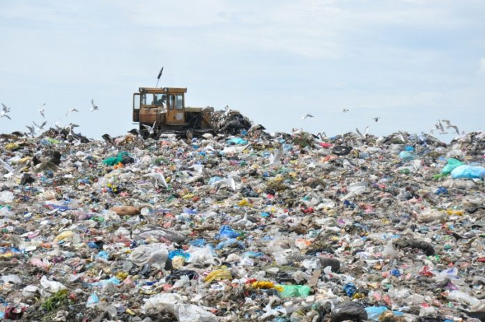 Сміттєвий колапс. У Галицькому районі вирішують проблему зі стихійним сміттєзвалищем: відео