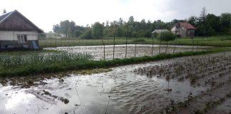 Вчорашні зливи затопили декілька прикарпатських сіл