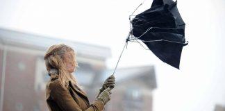 Як прикарпатцям діяти під час сильного вітру: основні правила