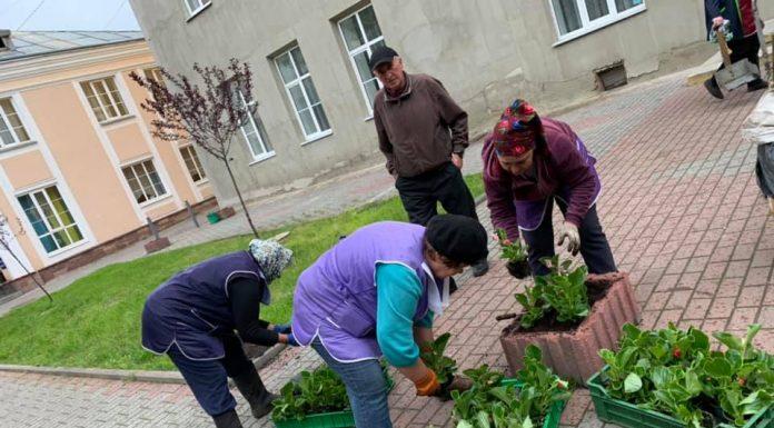 В Івано-Франківську продовжують прикрашати квітам