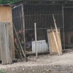 Небайдужі калушани відновили притулок Дім Сірка, який сильно постраждав під час минулотижневої повені: фоторепортаж