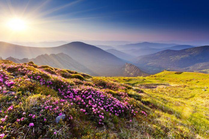 ТОП-11 неймовірно красивих місць Прикарпаття, корті варто відвідати: фоторепортаж