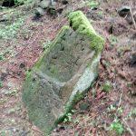 У Карпатах мандрівники натрапили на унікальну знахідку: фотофакт
