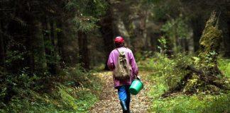 Рятувальники знайшли 64-річну прикарпатку, що заблукала в лісі
