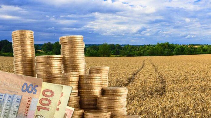 Прокуратура вимагає повернути громаді землі вартістю понад 60 мільйонів