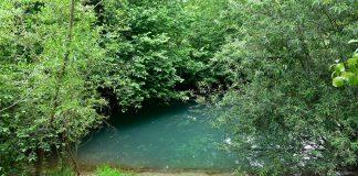 Як виглядає Бірюзове око Опілля - мальовниче карстове озерце на Франківщині