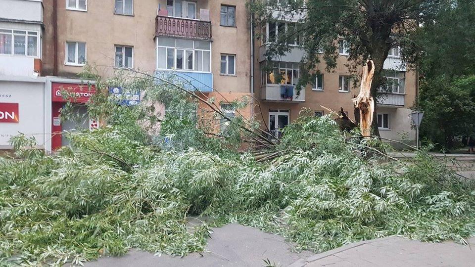 Прикарпатські рятувальники розрізали повалені стихією дерева
