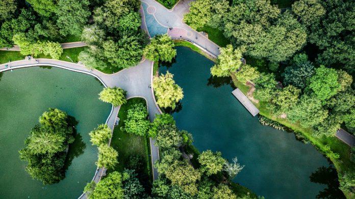 Франківський фотограф показав всю красу міського парку з висоти ФОТОРЕПОРТАЖ