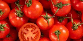 Різноманіття помідорів на Центральному ринку