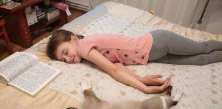 Франківці показують у мережі, як кумедно сплять їхні улюбленці
