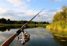 Жіноча рибалка: на Прикарпатті провели турнір