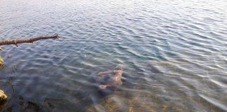 З міського озера люди витягнули тіло молодого прикарпатця - обставини його загибелі розслідує поліція