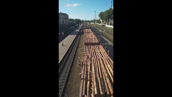 У Фпанківську на вокзалі зафіксували вагони з деревом: відео