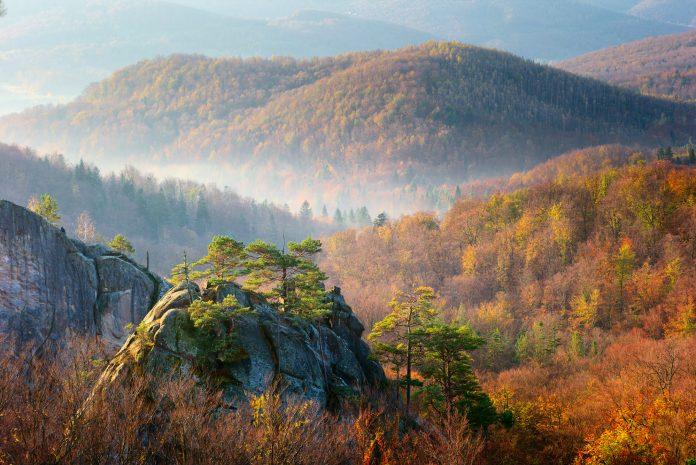 У мережі з'явилось цікаве відео про скелі Довбуша: відео