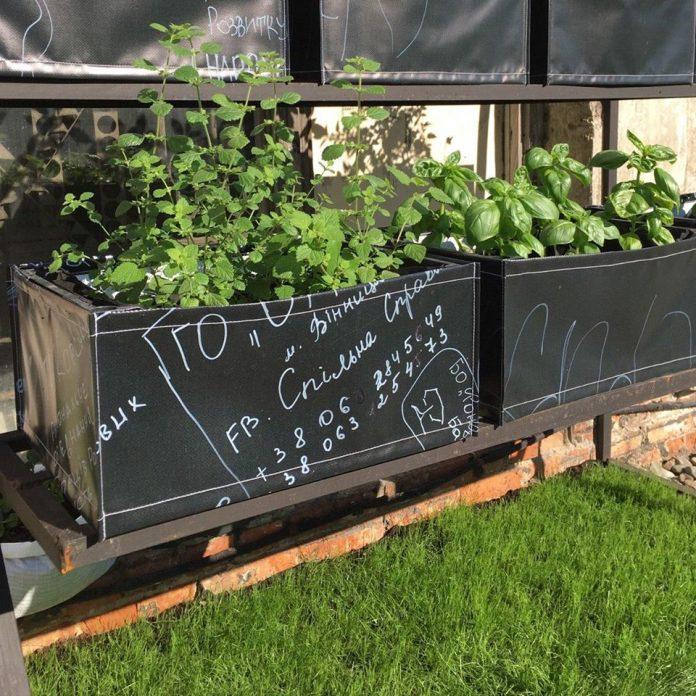 На даху колишнього франківського заводу висадили сад