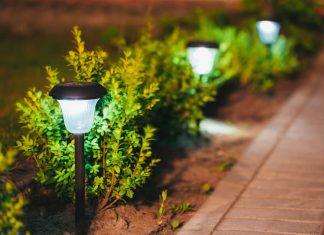 Садовые светильники для вашего газона
