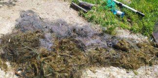 З Дністра вилучили незаконні знаряддя лову риби ФОТО