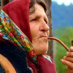 Руслана Лижичко закликала людей берегти ліси Карпат ФОТО та ВІДЕО