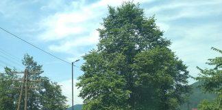 У Татарові встановили вуличне освітлення, в тому числі на проблемній ділянці