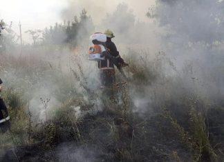 На Франківщині горіла суха трава на площі 300 метрів квадратних