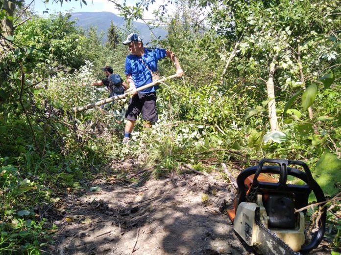 У Карпатах розчистили один із гірських маршрутів