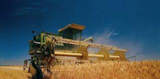 Прикарпатські аграрії намолотили понад 400 тисяч тонн збіжжя