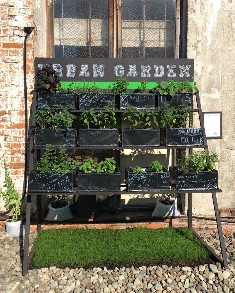 На даху колишнього франківського заводу висадили сад ФОТО