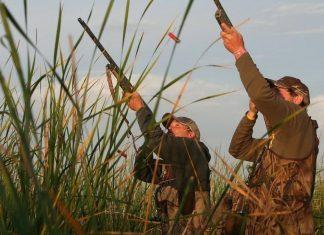 Цими вихідними на Прикарпатті стартує сезон полювання