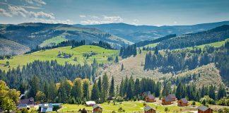 На Прикарпатті незаконно привласнили землю заповідника вартістю 11 мільйонів гривень