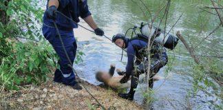 З дна Дністра витягнули тіло 18-річного утопленика, якого шукали декілька днів
