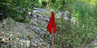 В селі на Коломийщині знову виявили та знешкодили майже півсотні вибухонебезпечних предметів