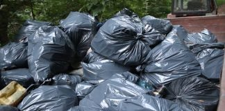 Близько півтори тонни сміття зібрали прикарпатські волонтери на березі Дністра