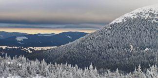 Аномальна зима - за сезон в Карпатах не зійшло жодної лавини