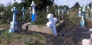 Через спалювання сухостою на Прикарпатті загорілось кладовище ФОТО
