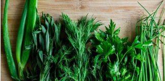 Найпопулярніші види свіжої зелені на Центральному ринку