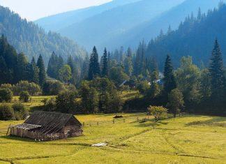 Гори кличуть. ТОП-5 популярних вершин українських Карпат, які варто підкорити