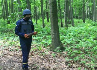Замість грибів – боєприпаси: у прикарпатському лісі виявили мінометну міну