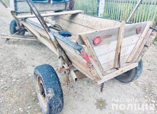 «ВАЗ» врізався у фіру: в аварії на Прикарпатті постраждали двоє дітей