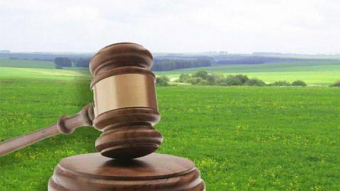 Незаконна оренда: суд повернув майже 300 гектарів землі на Снятинщині