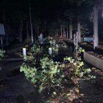 Нічна стихія наробила чимало шкоди в парку Шевченка ФОТО