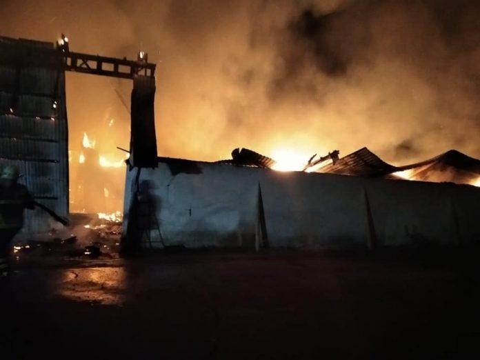 На Прикарпатті трапилась масштабна пожежа на складі з зерном соняшника та сої ФОТО