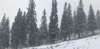 Зима вже близько: Карпати замело снігом ВІДЕО