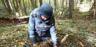 У лісі на Франківщині знешкодили 2 ручні гранати