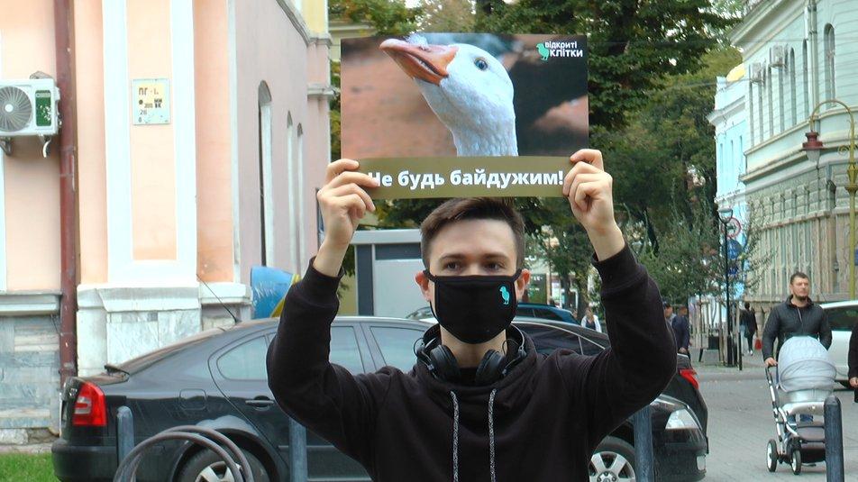 Франківці протестували проти жорстокого поводження з тваринами ФОТО та ВІДЕО