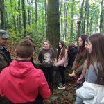 У лісах Карпат лісівники збирають букву